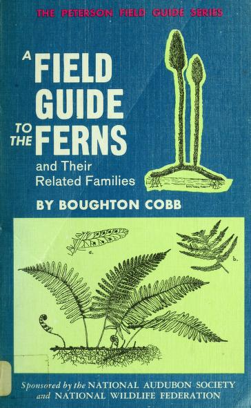 A field guide to the ferns and their related families of northeastern and central North America by Cobb, Boughton.